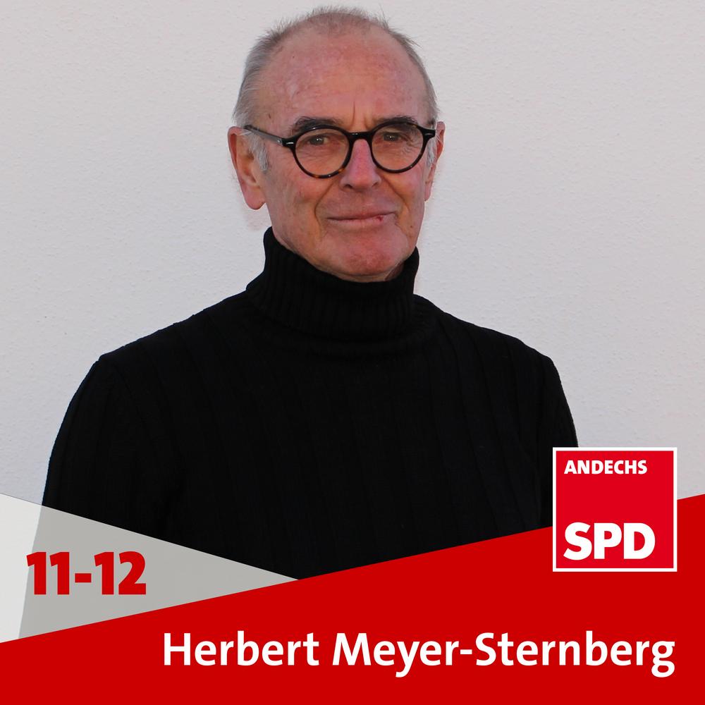 Prof. Dipl.-Ing. Herbert Meyer-Sternberg